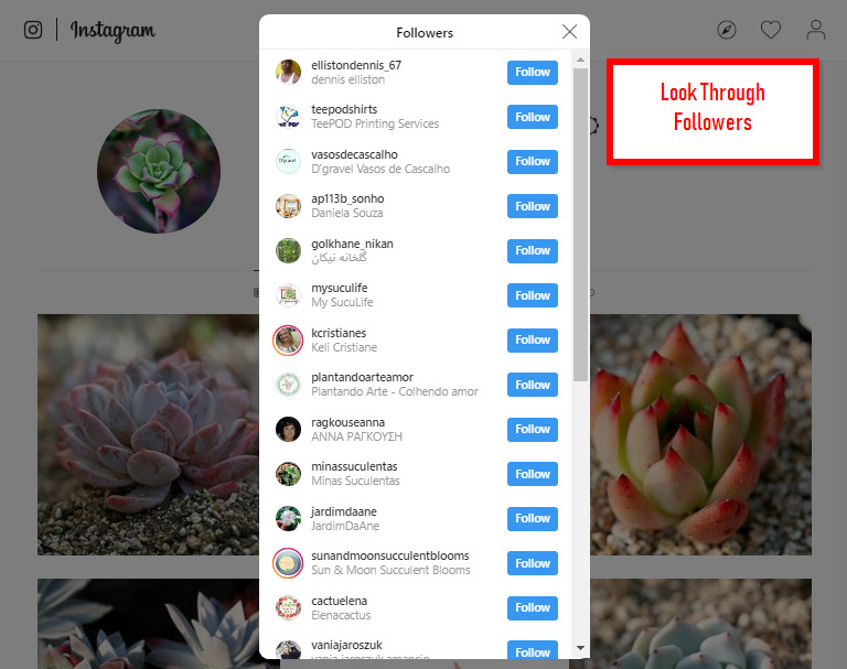 All Solutions to Find Influencers on Social Media - Check Out Your Followers