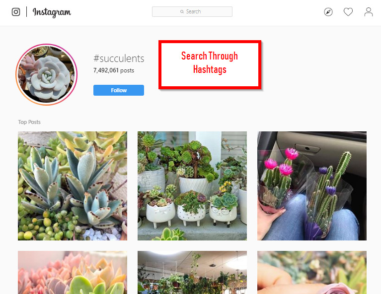 All Solutions to Find Influencers on Social Media - Search by Hashtags
