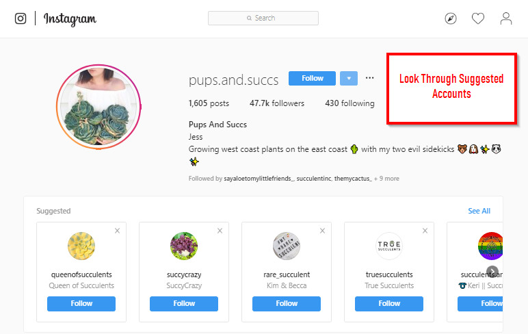 How to Find Instagram Influencers - Loog Though Suggested Accounts