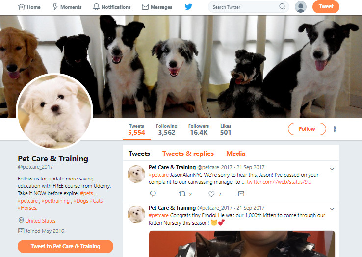 All Ways to Find Twitter Influencers - Check Profiles