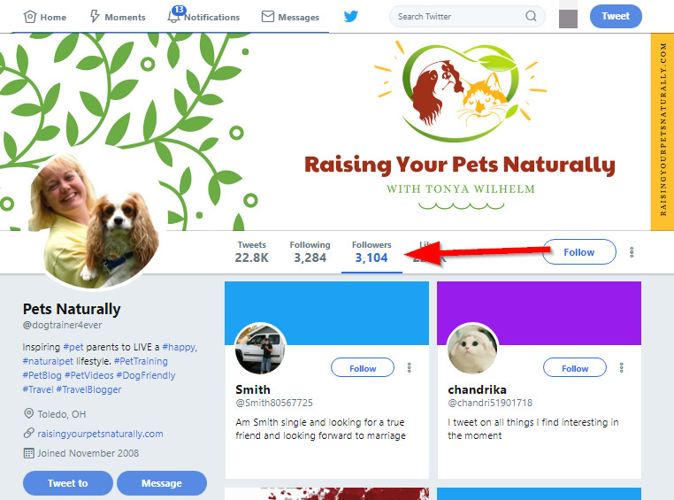 How to Look for Twitter Influencer Rating - Look Through Influencers from a Competitor's Follower List