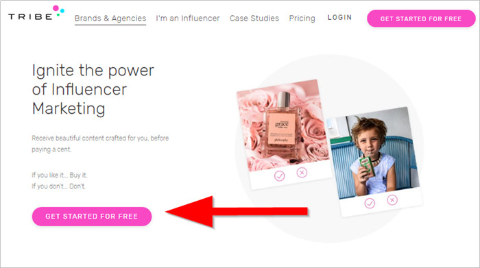 Triber Influencer Review and Its Best Alternatives - Get Started